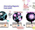 Un nanofilet pour piéger les cellules cancéreuses