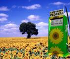 Un quart de carburants verts en 2050 ?