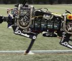 Un robot qui sait se déplacer…sans voir