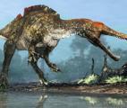 Un spinosaure en Asie