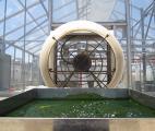 Un vaccin à base d'algues contre le paludisme