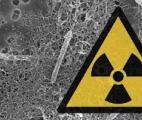 Une bactérie capable de décontaminer les eaux radioactives