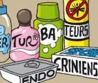 Une étude française confirme la nocivité des mélanges de perturbateurs endocriniens pendant la grossesse