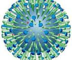 Une grippe chez la mère augmenterait le risque d'autisme chez l'enfant