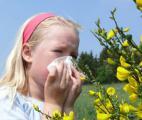 Une molécule qui bloque les réactions allergiques