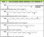 Une mutation génétique du récepteur des acides gras oméga-3 favorise l'obésité