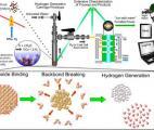 Vers la production d'hydrogène bon marché à partir de nano-silicium