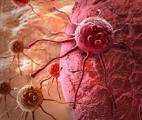 Vers une nouvelle classe de médicament contre le cancer