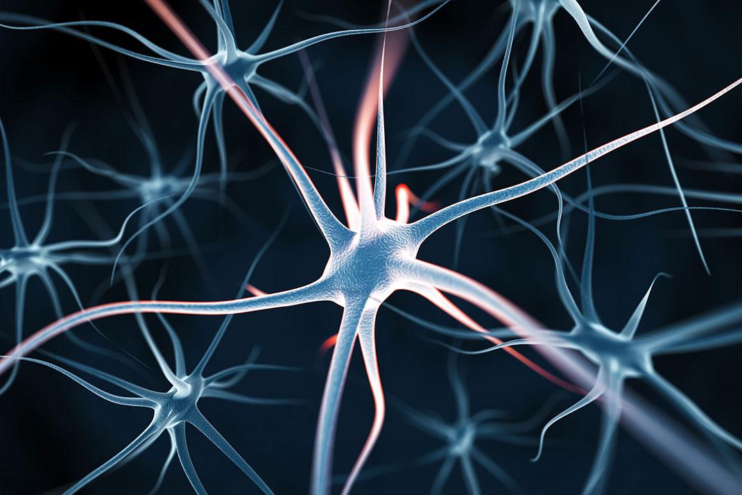 linda brain power system pdf
