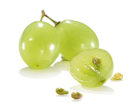 Les p pins de raisin contre le cancer de la prostate - Cuisiner avec les aliments contre le cancer pdf ...